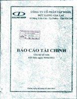 Báo cáo tài chính công ty mẹ quý 2 năm 2011 - Công ty Cổ phần Tập đoàn Đức Long Gia Lai