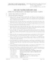 Báo cáo thường niên năm 2008 - Công ty cổ phần Dây Cáp Điện Việt Nam