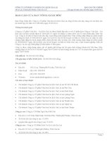 Báo cáo tài chính công ty mẹ quý 3 năm 2011 - Công ty cổ phần Gia Lai CTC