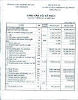 Báo cáo tài chính quý 3 năm 2012 - Công ty Cổ phần Kỹ nghệ Đô Thành