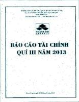Báo cáo tài chính quý 3 năm 2013 - Công ty Cổ phần Gạch men Chang Yih