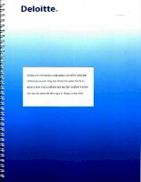 Báo cáo tài chính năm 2014 (đã kiểm toán) - Công ty Cổ phần Chế biến Gỗ Đức Thành