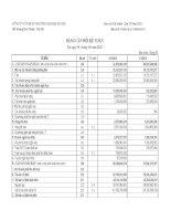 Báo cáo tài chính quý 2 năm 2012 - Công ty Cổ phần Thương mại Bia Hà Nội
