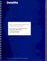 Báo cáo tài chính năm 2009 (đã kiểm toán) - Công ty Cổ phần Hệ thống Thông tin FPT