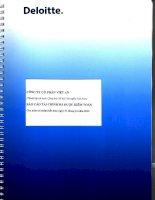Báo cáo tài chính năm 2013 (đã kiểm toán) - Công ty Cổ phần Việt An