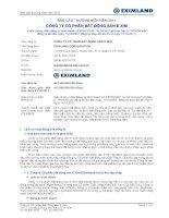 Báo cáo thường niên năm 2011 - Công ty cổ phần Bất động sản E Xim