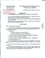Nghị quyết Hội đồng Quản trị ngày 22-1-2011 - Công ty Cổ phần Cao su Đà Nẵng