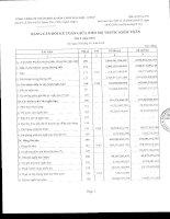 Báo cáo tài chính quý 2 năm 2010 - Tổng Công ty Phân bón và Hóa chất Dầu khí-CTCP