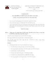 Nghị quyết đại hội cổ đông ngày 3-12-2009-2009 - Công ty cổ phần Đầu tư Căn nhà Mơ ước