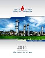 Báo cáo thường niên năm 2014 - Tổng Công ty Khí Việt Nam-CTCP