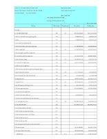 Báo cáo tài chính công ty mẹ quý 2 năm 2011 - Công ty Cổ phần Tập đoàn Đại Châu