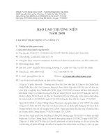 Báo cáo thường niên năm 2008 - Công ty Cổ phần Sản xuất Thương mại May Sài Gòn