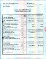 Báo cáo tài chính quý 2 năm 2014 - Công ty Cổ phần Kỹ nghệ Đô Thành