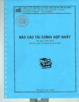 Báo cáo tài chính hợp nhất quý 3 năm 2010 - Công ty Cổ phần Tập đoàn Sao Mai
