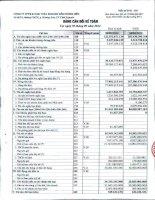 Báo cáo tài chính quý 3 năm 2012 - Công ty cổ phần Thương mại và Khai thác Khoáng sản Dương Hiếu