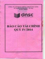 Báo cáo tài chính quý 4 năm 2014 - Công ty Cổ phần Chứng khoán Đà Nẵng