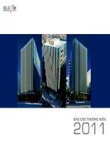 Báo cáo thường niên năm 2011 - Công ty Cổ phần Đầu tư Phát triển Công nghệ Điện tử Viễn thông