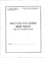 Báo cáo tài chính hợp nhất quý 2 năm 2010 - Công ty Cổ phần Tập đoàn Đức Long Gia Lai
