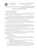 Báo cáo thường niên năm 2011 - Công ty Cổ phần DIC - Đồng Tiến