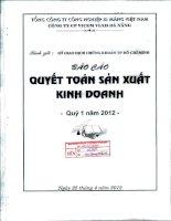 Báo cáo tài chính quý 1 năm 2012 - Công ty Cổ phần VICEM Vật liệu Xây dựng Đà Nẵng