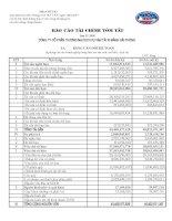 Báo cáo tài chính quý 4 năm 2009 - Công ty Cổ phần Thương mại Dịch vụ Vận tải Xi măng Hải Phòng
