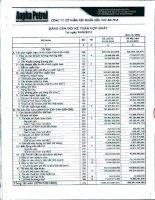 Báo cáo tài chính hợp nhất quý 3 năm 2010 - Công ty Cổ phần Tập đoàn Dầu khí An Pha