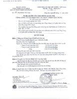 Nghị quyết Hội đồng Quản trị ngày 28-12-2009 - Tổng Công ty Cổ phần Đầu tư Phát triển Xây dựng