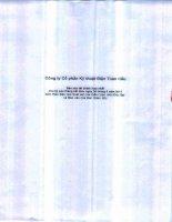 Báo cáo tài chính hợp nhất quý 2 năm 2011 (đã soát xét) - Công ty cổ phần Kỹ thuật điện Toàn Cầu