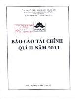 Báo cáo tài chính quý 2 năm 2011 - Công ty Cổ phần Gạch men Chang Yih