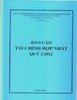 Báo cáo tài chính hợp nhất quý 2 năm 2012 - Công ty cổ phần Đầu tư Hạ tầng Kỹ thuật T.P Hồ Chí Minh