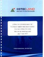 Báo cáo tài chính hợp nhất quý 1 năm 2012 - Công ty Cổ phần Đầu tư và Phát triển Nhà đất COTEC