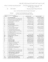 Báo cáo tài chính quý 4 năm 2009 - Công ty Cổ phần Đồ hộp Hạ Long