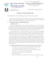 Báo cáo thường niên năm 2006 - Công ty Cổ phần HACISCO