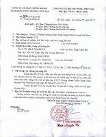 Báo cáo tài chính quý 2 năm 2015 - Công ty cổ phần Chứng khoán Ngân hàng Công thương Việt Nam