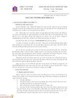 Báo cáo thường niên năm 2012 - Công ty Cổ phần DIC - Đồng Tiến