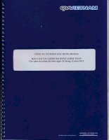 Báo cáo tài chính năm 2013 (đã kiểm toán) - CTCP Xây dựng HUD101