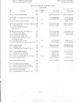 Báo cáo tài chính hợp nhất quý 3 năm 2010 - Công ty Cổ phần Tập đoàn Hà Đô