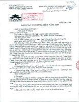 Báo cáo thường niên năm 2009 - Công ty Cổ phần Gạch men Chang Yih