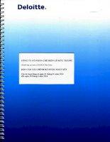 Báo cáo tài chính quý 2 năm 2014 (đã soát xét) - Công ty Cổ phần Chế biến Gỗ Đức Thành