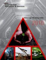 Báo cáo thường niên năm 2010 - Công ty cổ phần Xây dựng và Nhân lực Việt Nam
