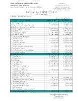 Báo cáo tài chính quý 4 năm 2009 - Công ty Cổ phần Bê tông Hoà Cầm - Intimex