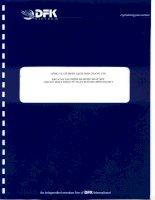Báo cáo tài chính quý 2 năm 2013 (đã soát xét) - Công ty Cổ phần Gạch men Chang Yih