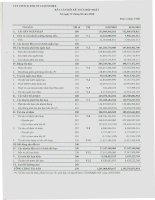 Báo cáo tài chính hợp nhất quý 1 năm 2010 - Công ty Cổ phần Chế biến và Xuất nhập khẩu Thủy sản CADOVIMEX
