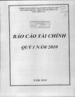 Báo cáo tài chính quý 1 năm 2010 - Công ty Cổ phần Gạch men Chang Yih