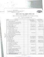 Báo cáo tài chính năm 2007 (đã kiểm toán) - Công ty Cổ phần Thương mại Dịch vụ Vận tải Xi măng Hải Phòng