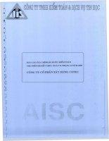 Báo cáo tài chính năm 2008 (đã kiểm toán) - Công ty Cổ phần Xây dựng Cotec