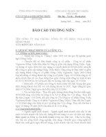 Báo cáo thường niên năm 2010 - Công ty Cổ phần Viglacera Đông Triều