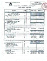 Báo cáo tài chính hợp nhất quý 2 năm 2010 - Công ty Cổ phần Đầu tư và Thương mại DIC