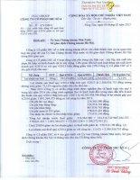Báo cáo tài chính quý 4 năm 2014 - Công ty Cổ phần DIC số 4