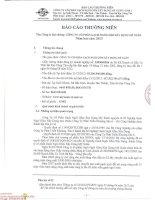 Báo cáo thường niên năm 2013 - Công ty cổ phần Gạch Ngói Gốm Xây dựng Mỹ Xuân